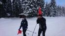 Langlauftraining Tellerhäuser 01/2017_14